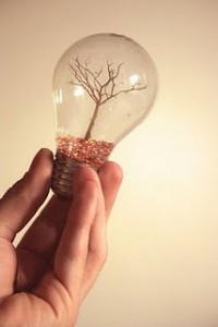 lamp[1]
